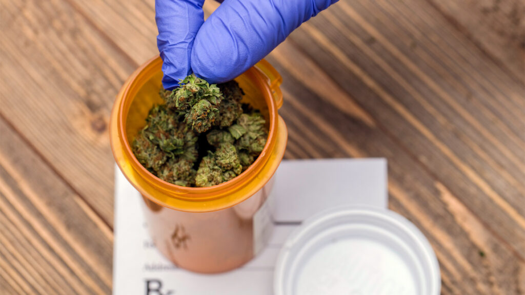 Use Of Medical Cannabis